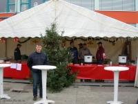 Wesenitztaler Weihnachtsmarkt, 29.11.2009