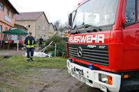 Weihnachtsbaumverbrennen in Dittersbach, 15.01.2011