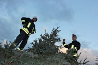 Weihnachtsbaumverbrennen auf dem Dittersbacher Markt, 14.01.2012