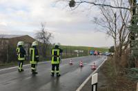 Baumsturz in Dittersbach, 14.01.2019